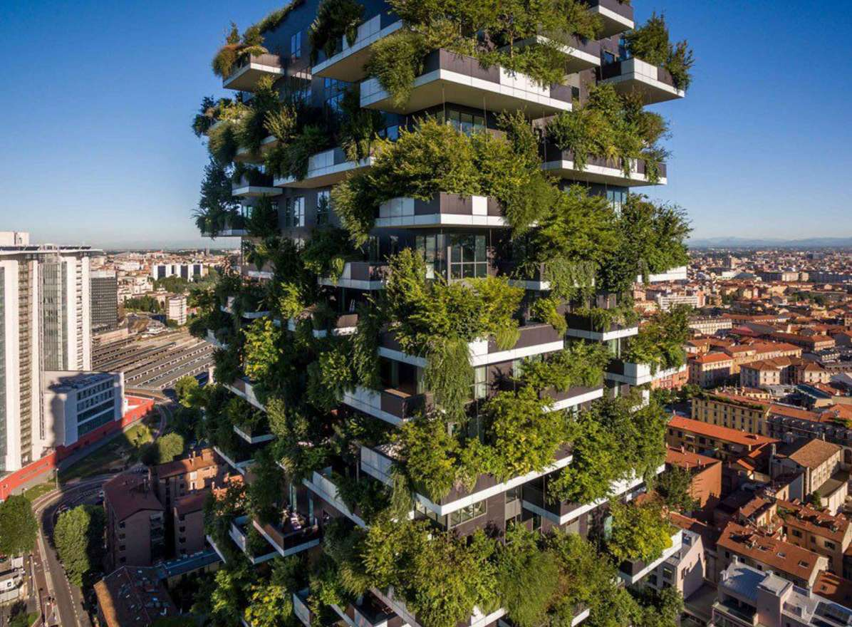 china vertical forests