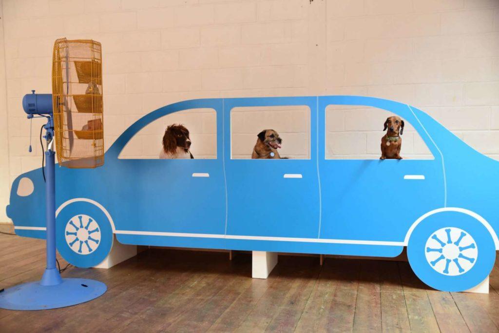 Dog Art - Car 2