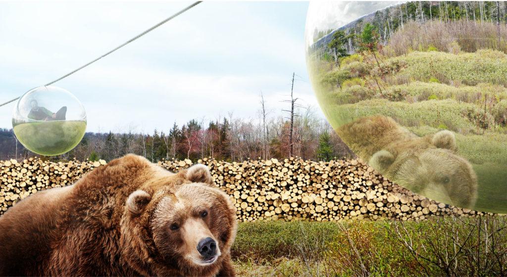 Zootopia - Bears